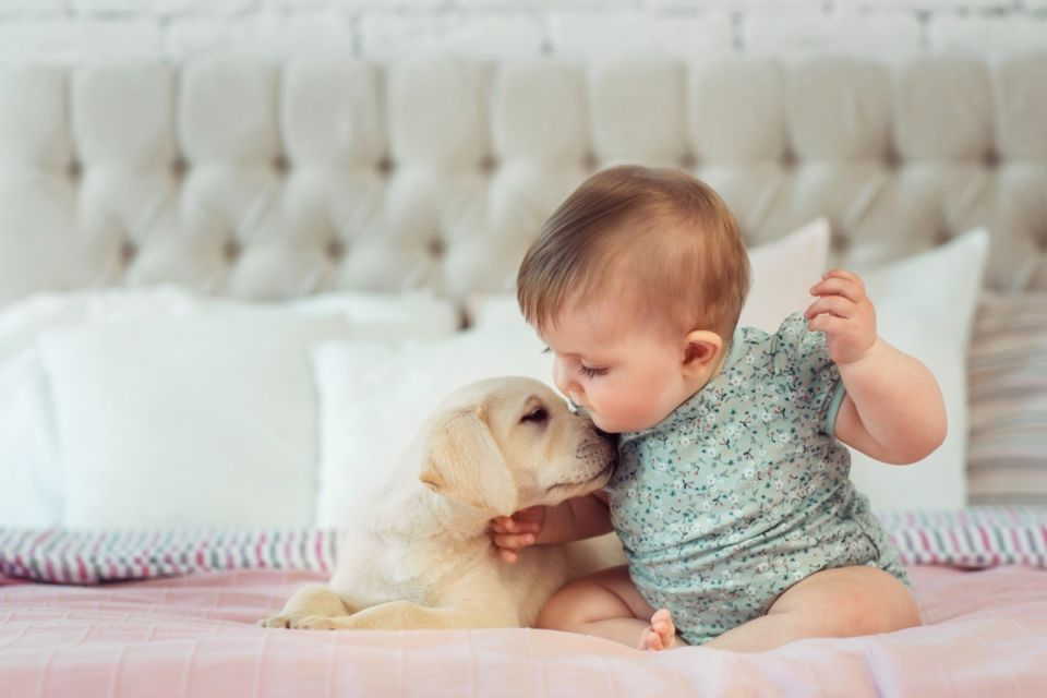 baby-kissing-tiny-puppy